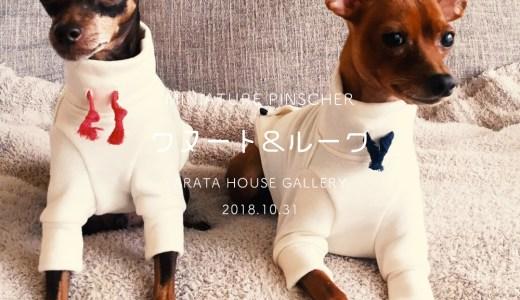 愛犬を想う気持ち「毎日着るものだからこそ肌触りの良いものを。」