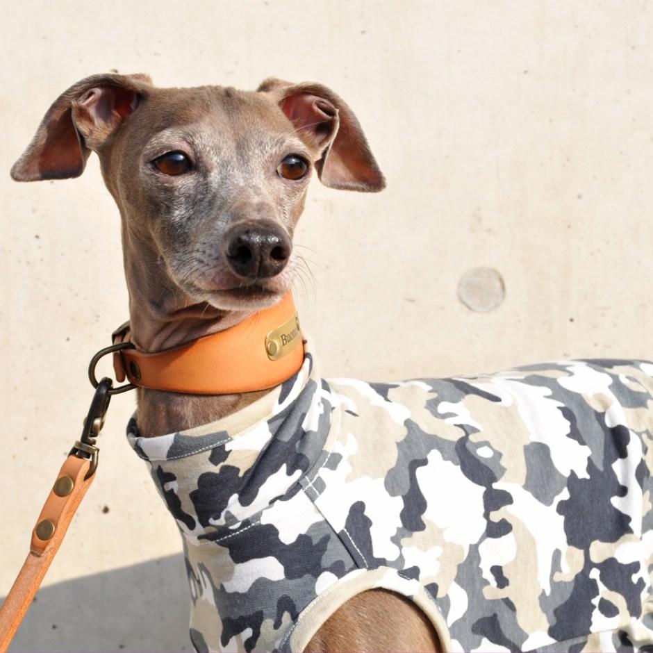 犬服 Friendly Camouflage 日本製天竺迷彩 選べる4タイプ