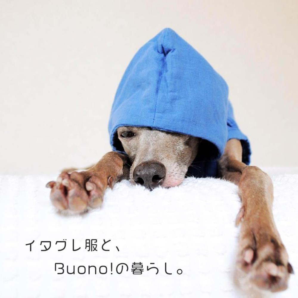 2つのお知らせ:消費税増税に伴う価格変更/Buono!デザインの販売開始