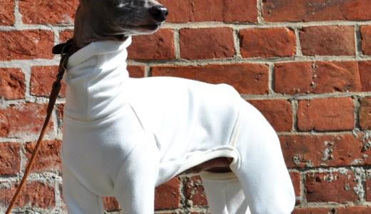 12月の犬服:クリスマスに大晦日、寒い冬を暖かく過ごす犬服10選