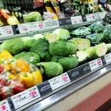 ペット看護士おすすめの野菜を隣町へ買いに行ってきます! #イタグレBuonoの手作りごはんレシピ 2 「犬の手作りご飯レシピ」