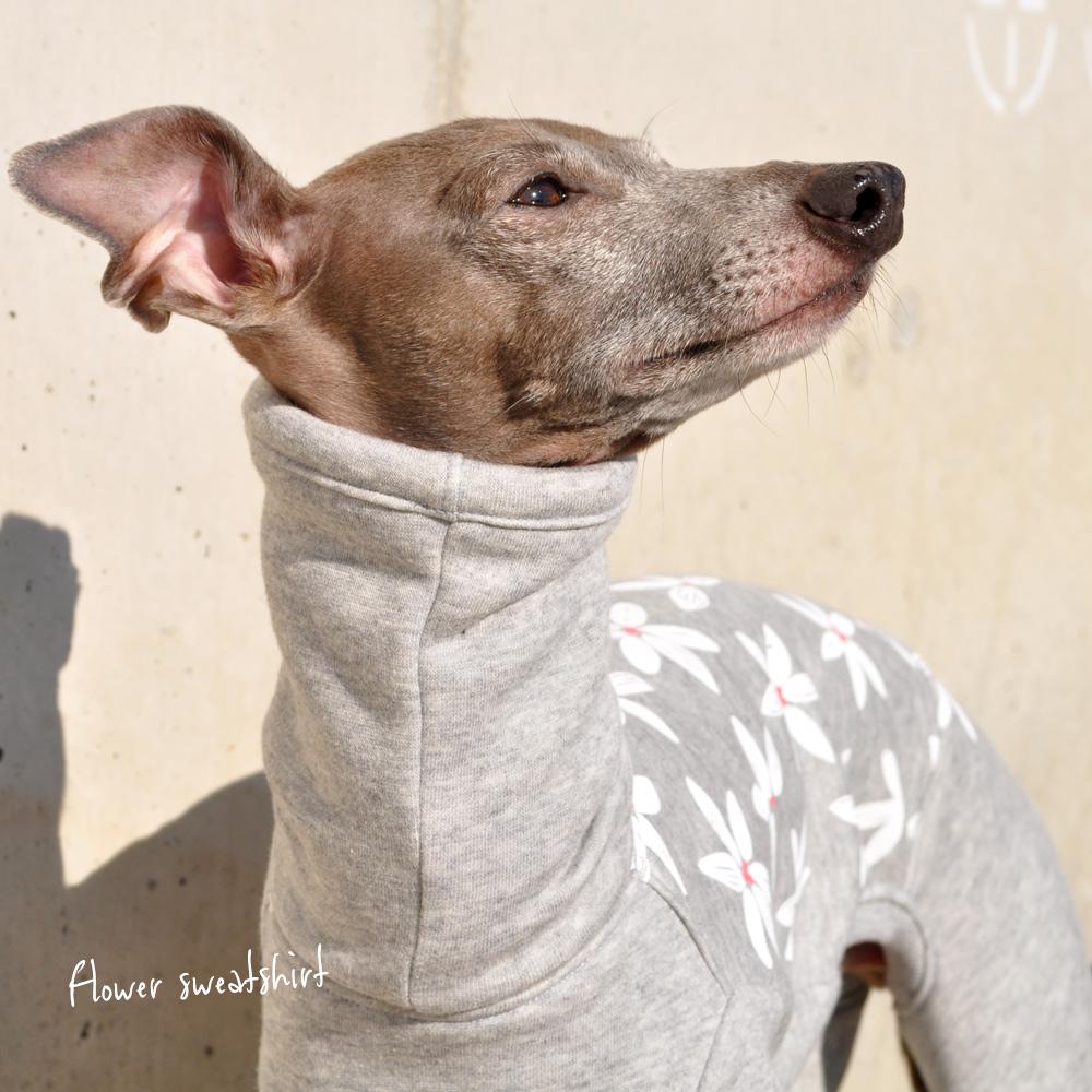 イタグレ 服|ミニピン服|ウィペット服|チャイクレ服|サルーキ服|犬服|Flower sweatshirt|トレーナー|ジャスミン裏起毛ニット|選べる4タイプ