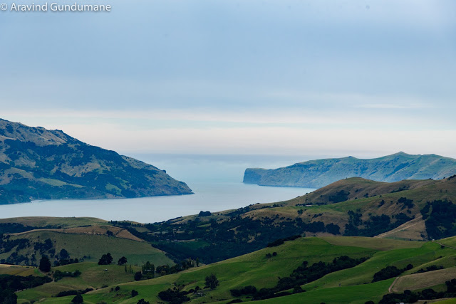 New Zealand day 10: Banks Peninsula