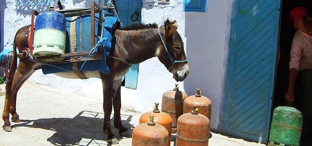 druckgasbehaelter lagern oder bereithalten