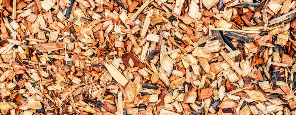 wood chips covering the ground