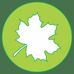 icon-maple-leaf
