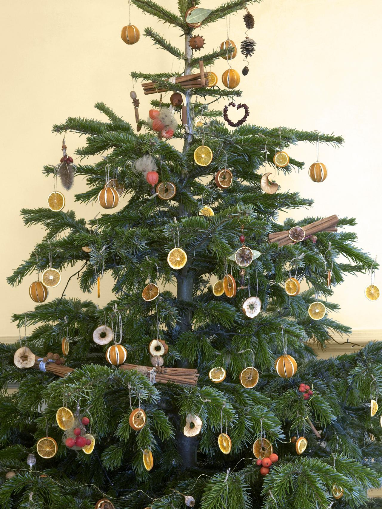 Diy Decorating An Outdoor Christmas Tree The Natural Way Arbor Day Blog