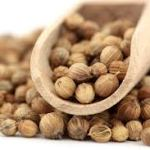 grains de coriandre