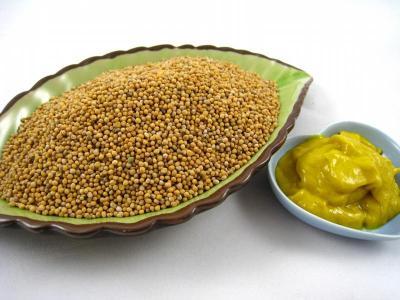 moutarde_grains_biologique