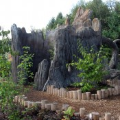 Discovery Tree in Mushroom Hollow