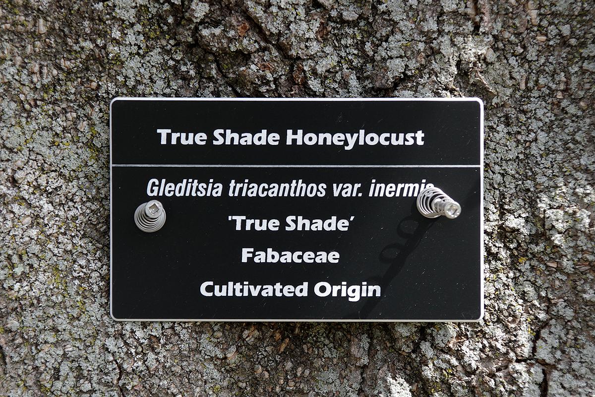 Horticultural Garden Notes Tree Labels Spring Trail Pond