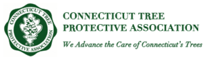 connecticut tree protective association
