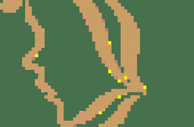 Pyrenees arbre seul