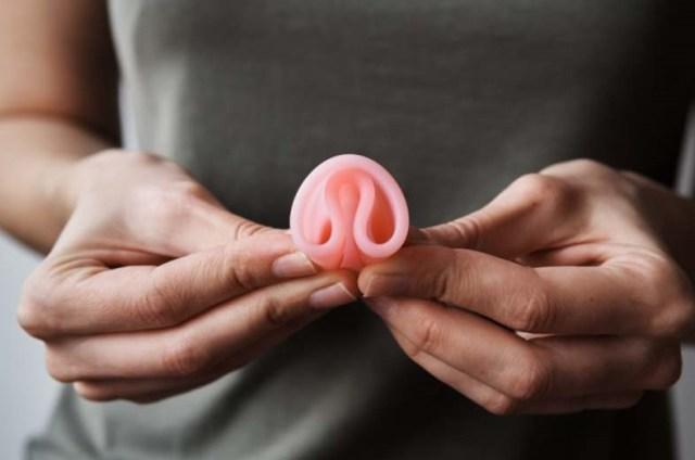 brouillard dans campagne