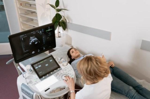 coucher de soleil à travers les branches