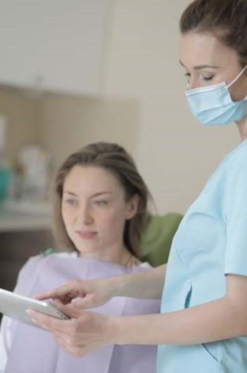 lechat-grimpe-arbre