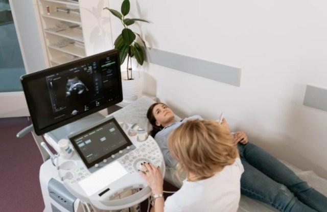 lever du soleil arbres