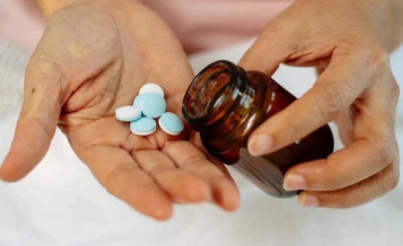 mesange bebe oiseau