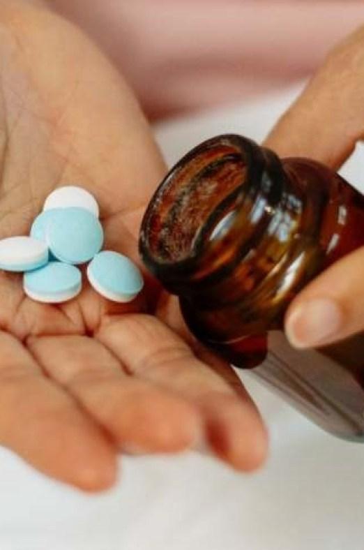 neige arbre quebec