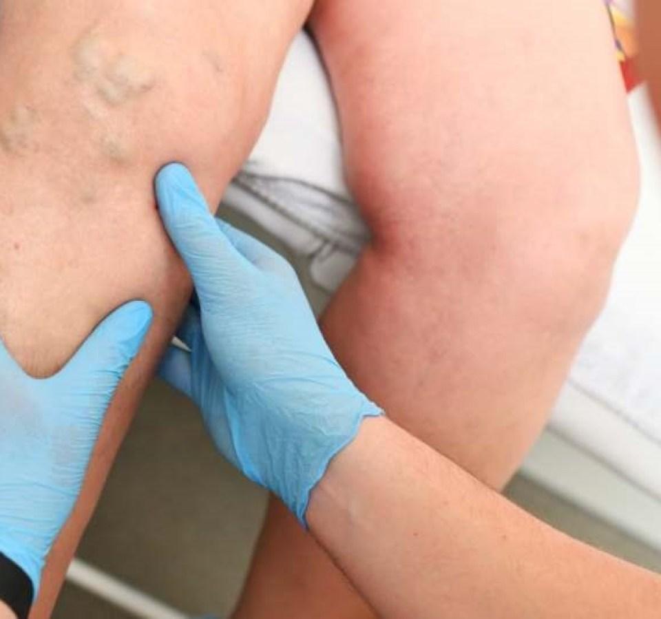 oiseau sur barrière