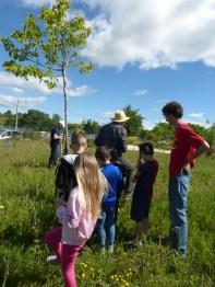 8 - On découvre les arbres du mémory