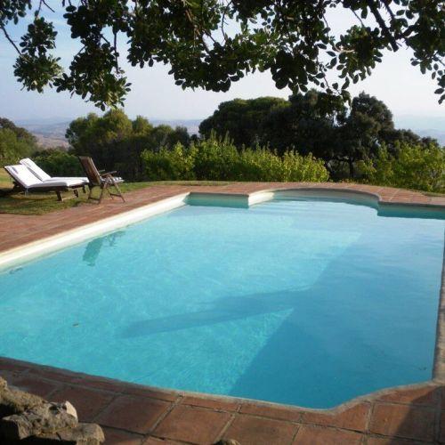 Pool Almuna