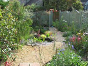 A complete garden makeover, one year on