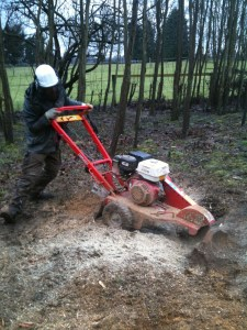 Work done in the winter limits damage to your lawn in the summer