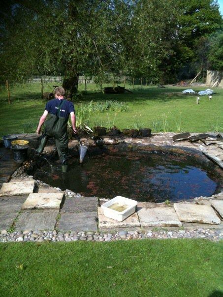 Ponds and aquatics expert, Gavin
