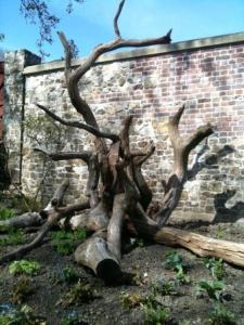Timber feature in the Walled Garden at Parham