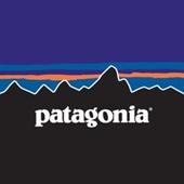 patagonia_個人輸入_海外通販_ジャケット