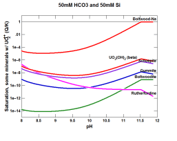 Predictions of GWB modeling on the formation of uranium-bearing phases after ammonia gas injection