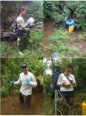 FIU Researcher and Students Recording Field Measurements