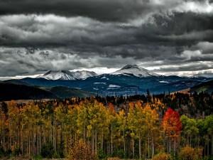 colorado, fall, autumn-1761293.jpg