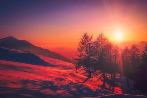 sunset, mountains, trees-2080072.jpg