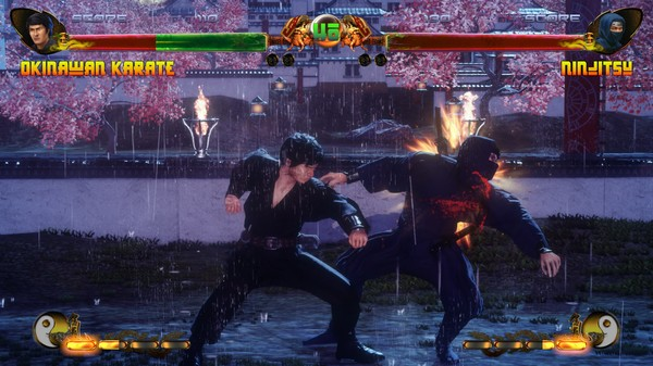 Arcade Heroes New Fighter: The Kung Fu Vs  Karate Champ Coming To