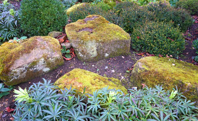 A natural arrangement of rocks create a relaxed informal garden