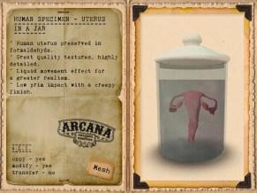 {A} Human Specimen - Uterus in a Jar Vendor