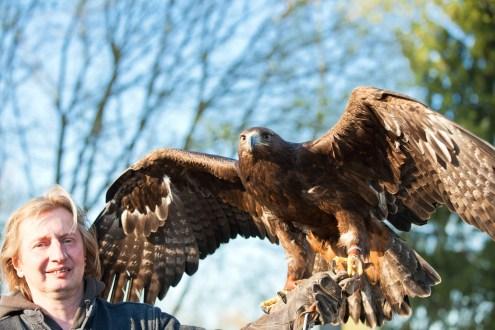 Mann mit Adler