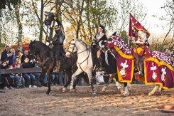 Ritter zu Pferden