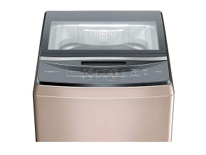 Bosch 8 kg Fully-Automatic Top Loading Washing Machine WOA802R0IN, Champagne