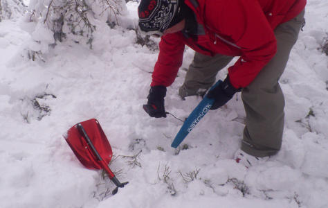 Avalanche search practise for ski touring