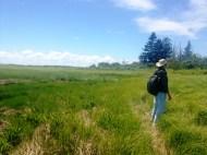 Taking in the landscape