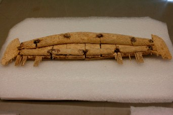 A decorated antler comb - one of the more prestigious objects found.