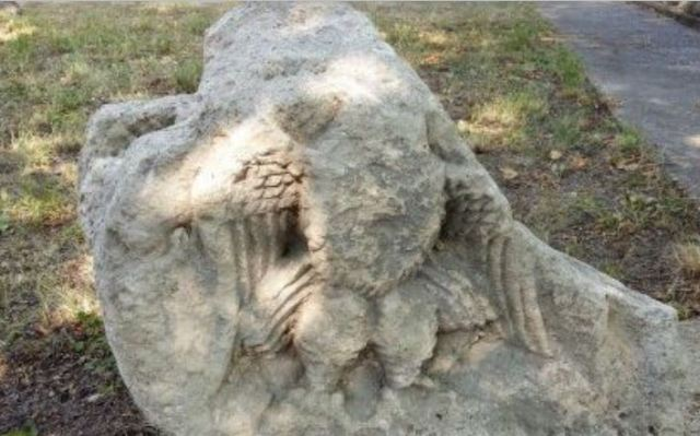 A stone relief depicting an eagle, which was probably part of the facade of a temple dedicated to Jupiter, has been discovered near the Ancient Roman city of Novae in Bulgaria's Danube town of Svishtov. Photo: Svishtov Today