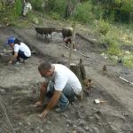 Archaeologists Unearth Coins, Iron Artifacts, Ceramics at Medieval Bulgarian Fortress Cherven
