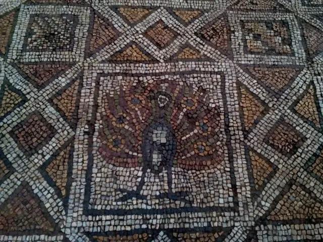 Plovdiv Basilica Mosaics 2