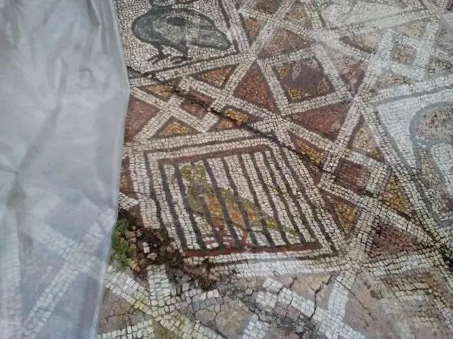 Plovdiv Basilica Mosaics 6