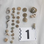 Bulgarian Police Seize Almost 1,000 Archaeological Artifacts from Treasure Hunters