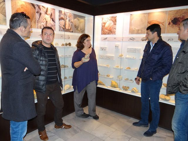 The Burgas Museum of Natural History has received a donation from three local Rotary Clubs in order to purchase rare fossils. Photo: Burgas Museum of Natural History